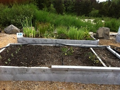 Drip Irrigation Raised Bed
