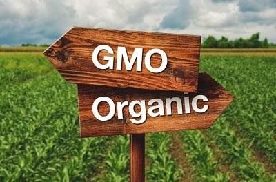GMO Organic