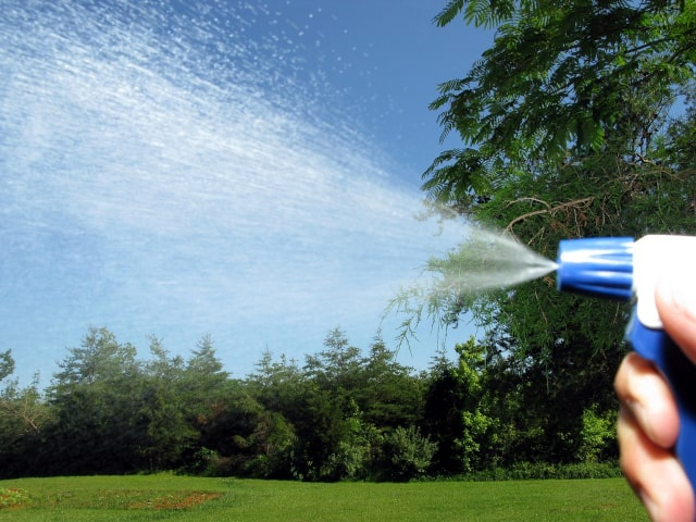 Homemade Insecticides