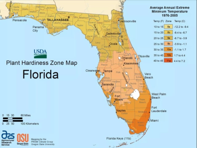 USDA Florida planting zones
