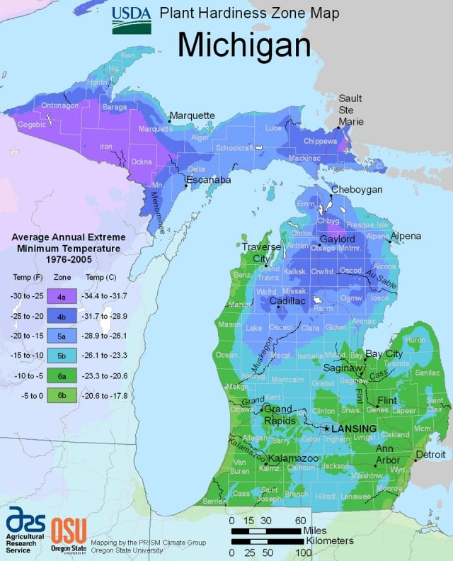 USDA Michigan planting zones