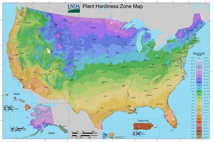USDA Planting Zones
